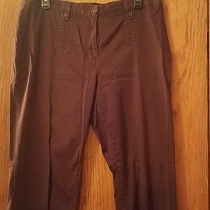 Dressbarn pants